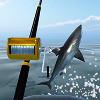 Рыбалка на лазурном море (Azure Sea Fishing)