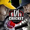 Кубок мира по крикету (Cricket World Cup)